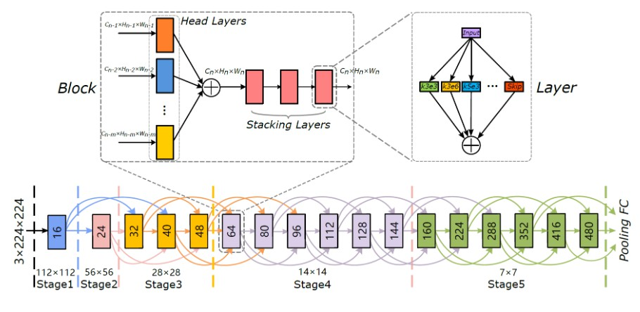 Densely Connected Search Space for More Flexible Neural Architecture Search