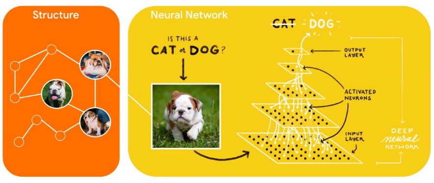 A new learning paradigm to train neural networks by leveraging structured signals