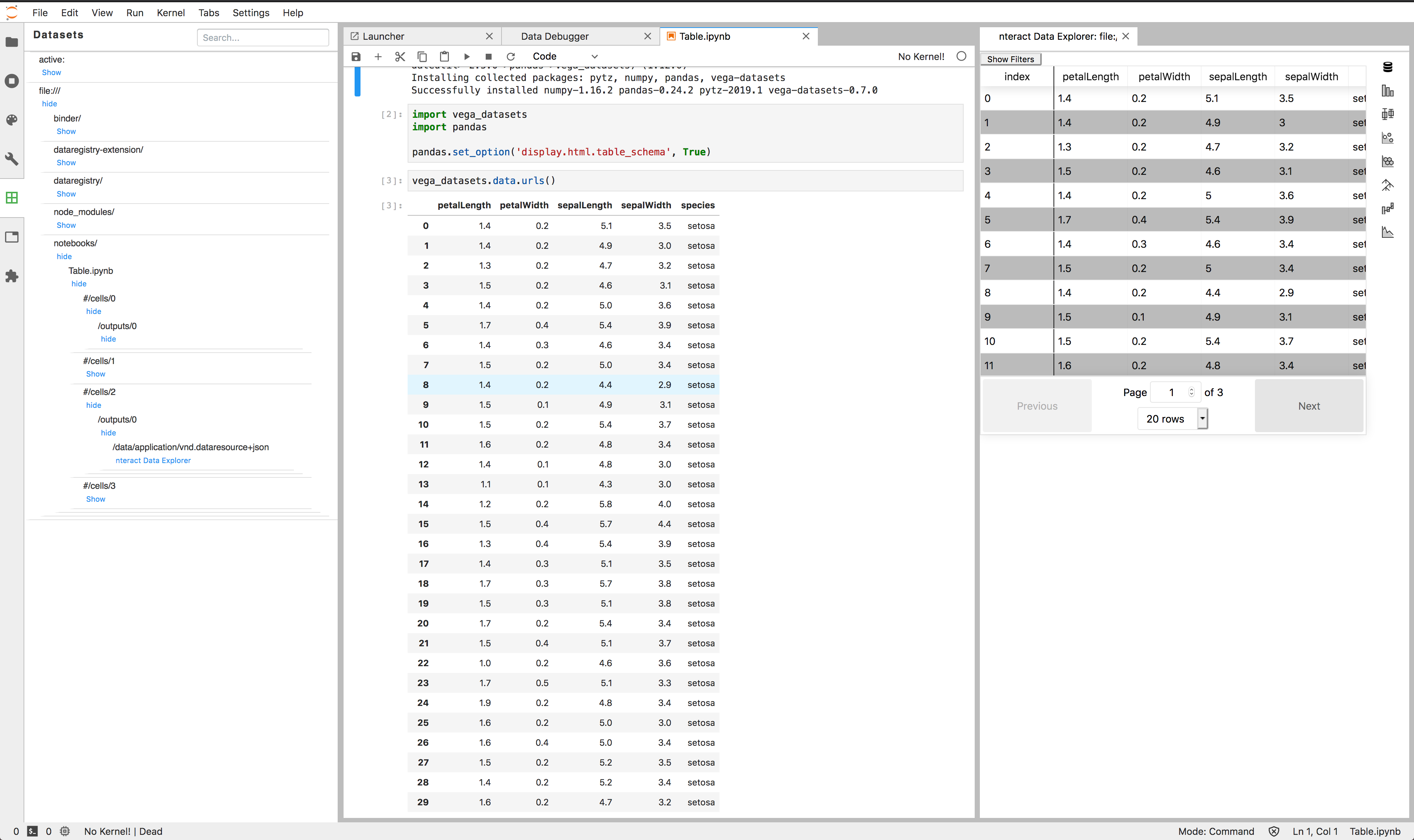 First class datasets in JupyterLab