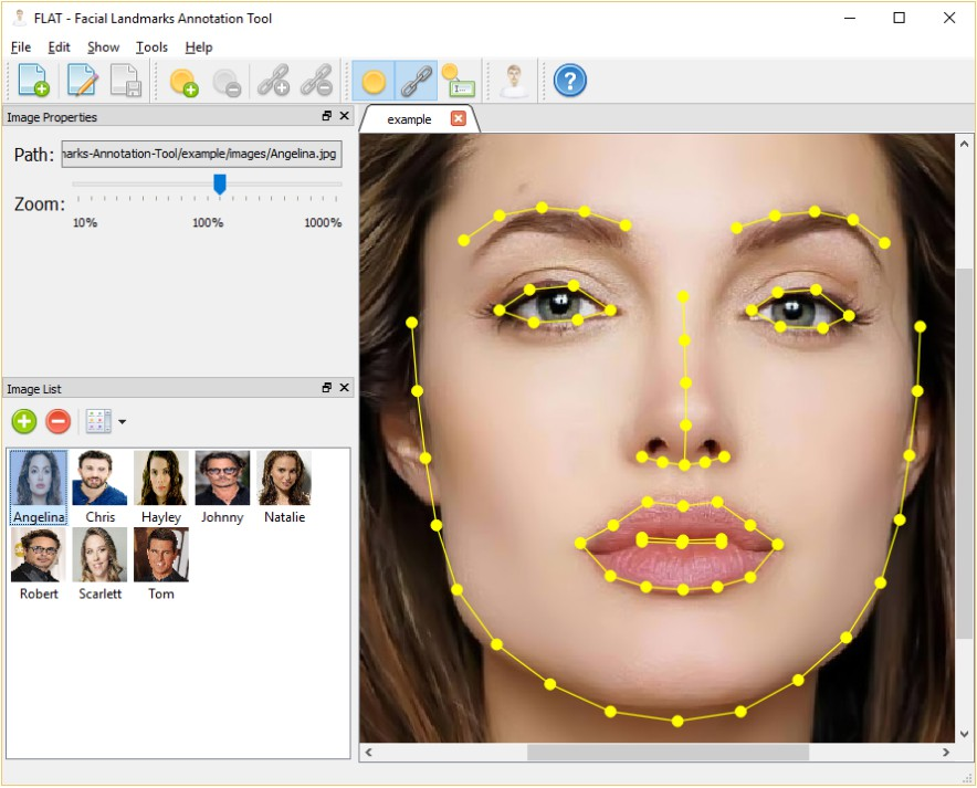 A visual editor for manually annotating facial landmarks in images of human faces
