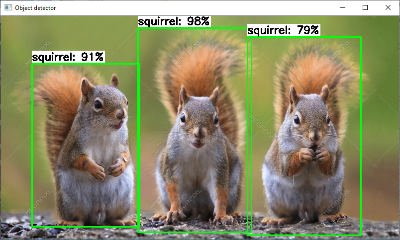 TensorFlow Lite Object Detection on Android and Raspberry Pi