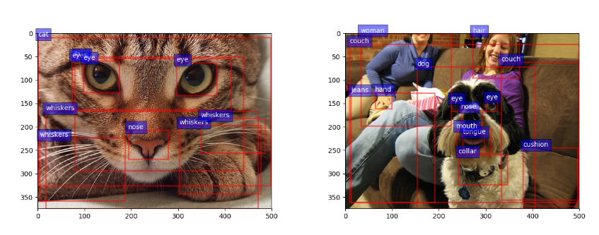 Faster R-CNN with model pretrained on Visual Genome