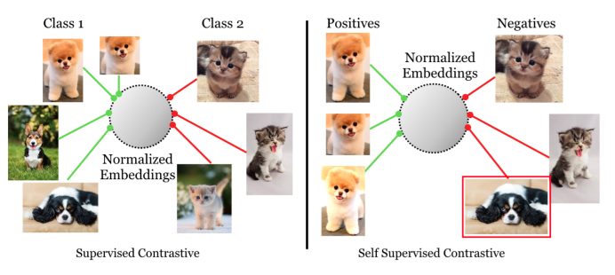 PyTorch implementation of Supervised Contrastive Learning