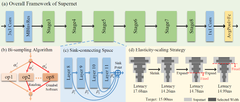 Rethinking Three Search Freedoms of Latency-Constrained Differentiable Neural Architecture Search